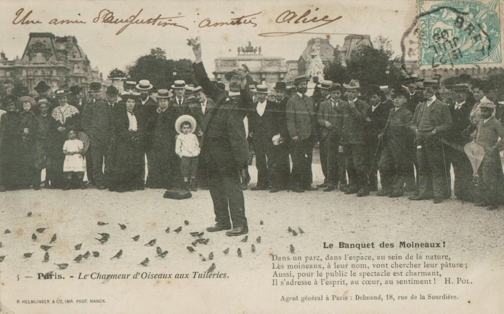 Le charmeur d'oiseaux - Le Banquet des moineaux.