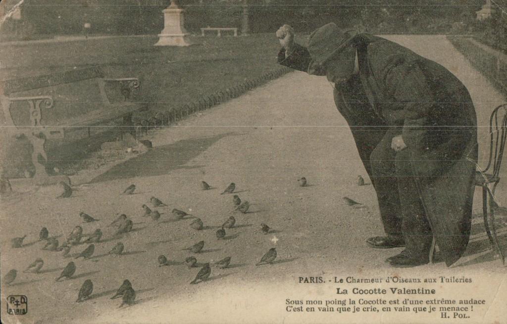 Le charmeur d'oiseaux - La cocotte Valentine.