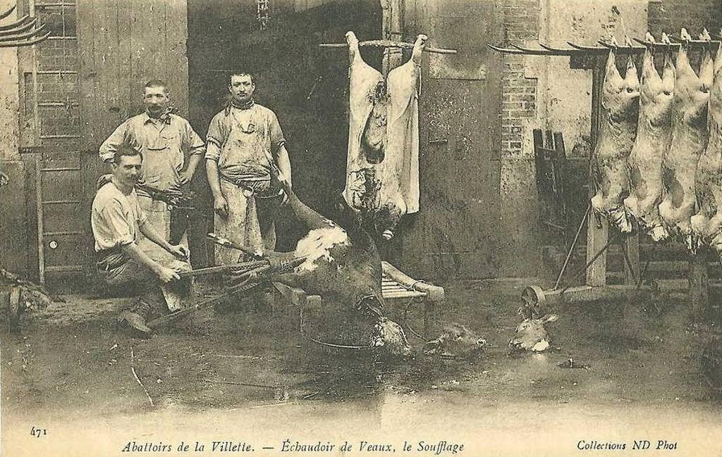 Abattoirs de la Villette - Echaudoirs de Veaux - Le soufflage.